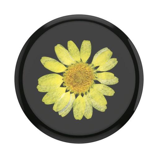 صورة بوب سوكيت بوب جريب مسكة للموبايل - أسود/أصفر